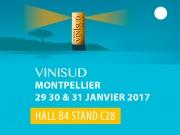 13th edition of VINISUD!
